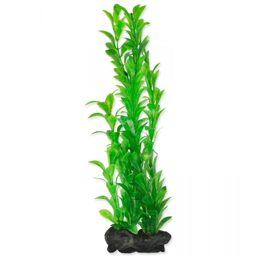 Декоративное растение для аквариума -  Trixie Hygrophila L, 30cм