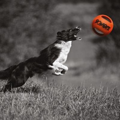 Игрушка для собак - Bomber, 15 cm