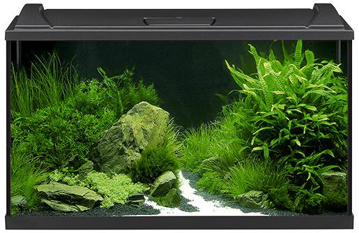 Akvārijs - EHEIM Aquapro LED black, 126l