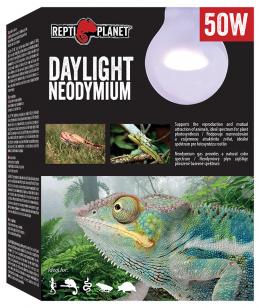 Spuldze terārija lampai - ReptiPlanet Daylight Neodymium, 50W