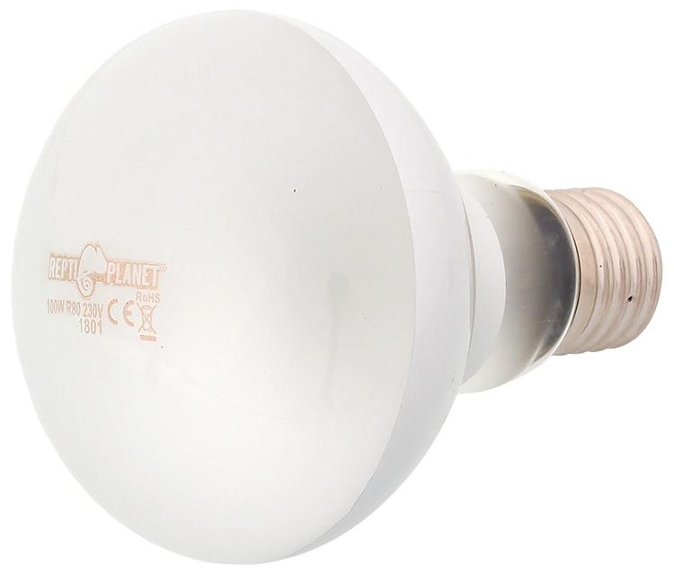 Spuldze terārija lampai - ReptiPlanet Daylight Frosted, 100W