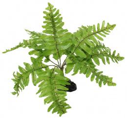 Декор для террариума - ReptiPlanet Nephrolepis fern, 20 см