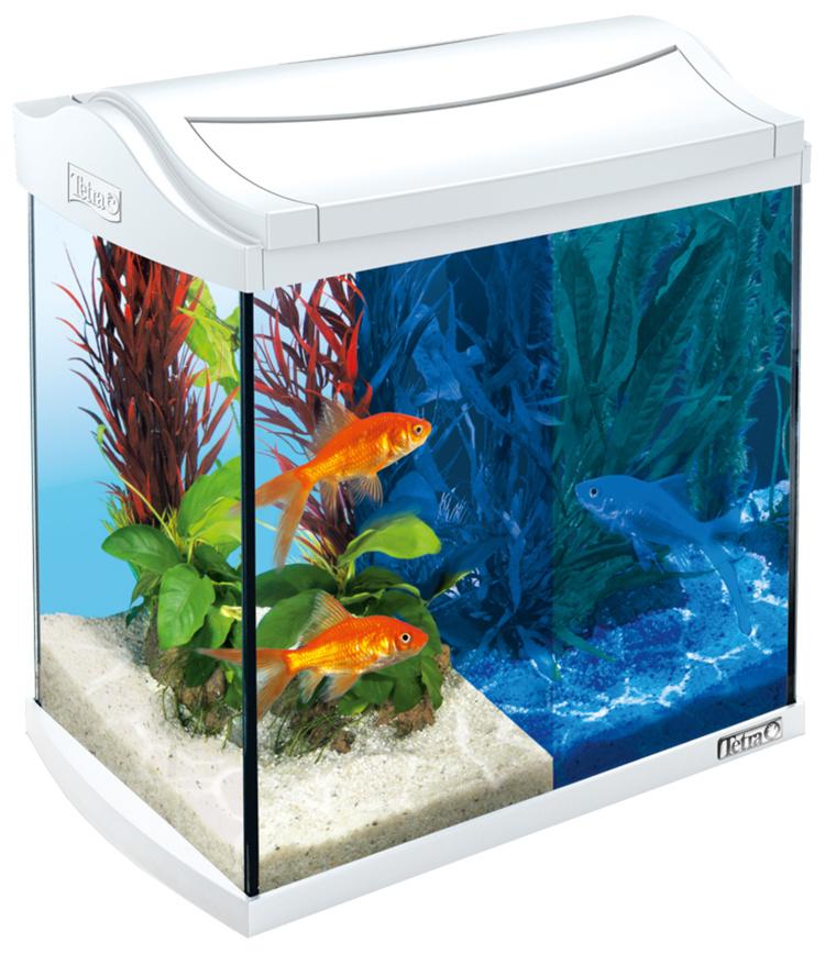 Akvārijs - TETRA Aqua Art LED 30l, Goldfish, white / zelta zivtiņām