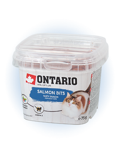 Gardums kaķiem - Ontario Salmon bits, 75 g title=