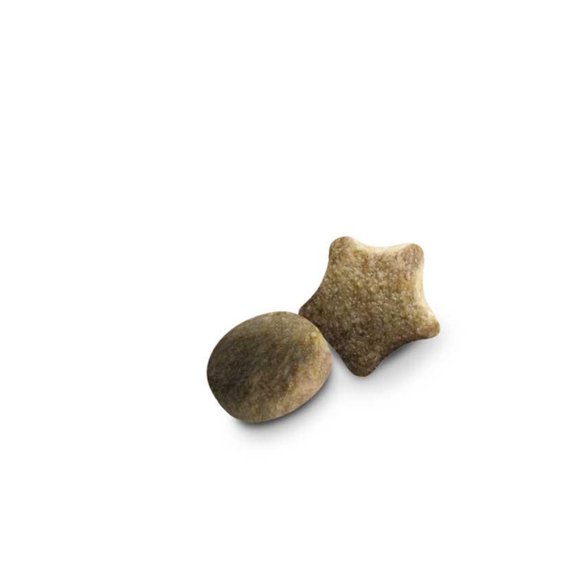 Barība suņiem - Dog Chow Adult lamb & rice, 14 kg