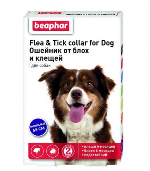Препарат против блох, клещей для собак - ошейник Beaphar Ungezieferband For Dog, фиолетовый 65 см, безрецептурный препарат NR VA - 072463/3 title=
