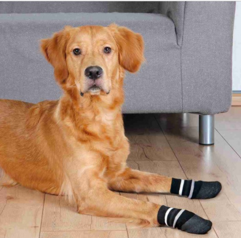Neslīdošās zeķes - Trixie Dog socks, M–L, 2 gb title=