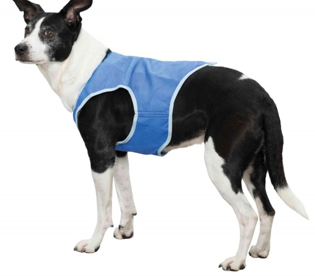 Охлаждающий жилет для собак - Trixie Cooling Vest, XS: 20 см, синий