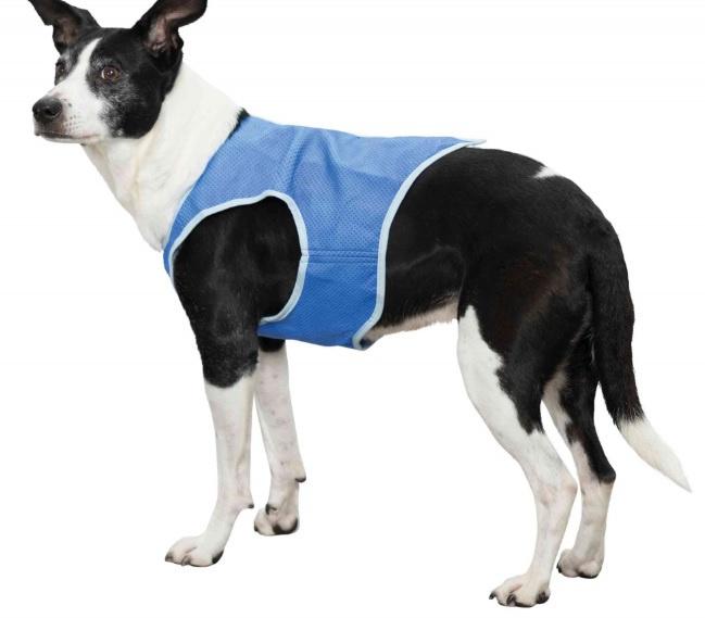 Atvēsinošā veste suņiem - Trixie Cooling Vest, 30 cm, blue