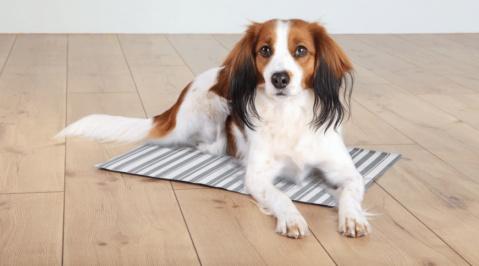 Atvēsinošs paklājiņš suņiem - Trixie Cooling mat, 50*40 cm, white/grey