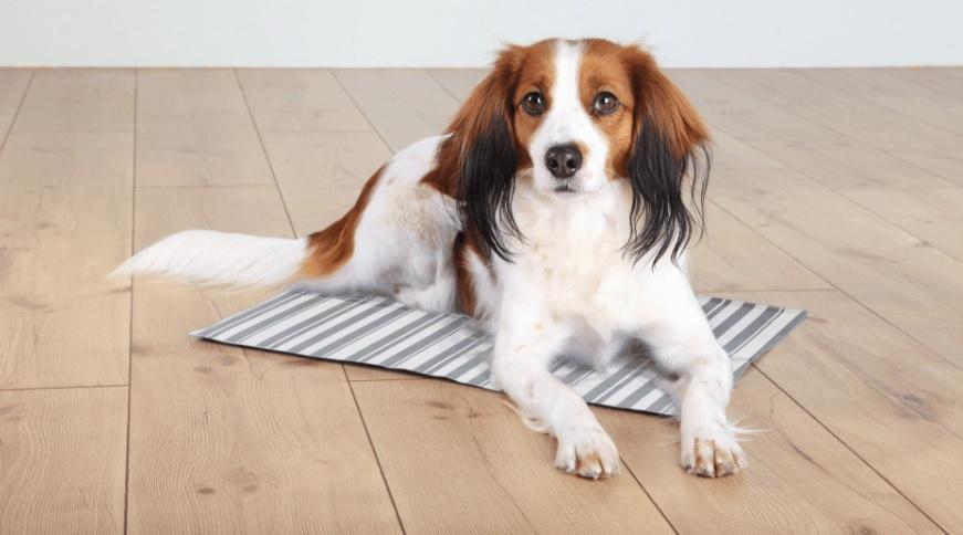 Охлаждающий коврик для собак - Trixie Cooling mat, 50*40 cm, white/grey
