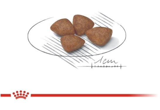 Корм для кормящих сук и щенков - Royal Canin Starter Mini, 3 кг