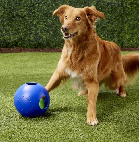 Bumba suņiem - Jolly Pets Teaser Ball, 10 cm