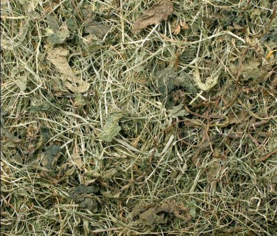 Siens grauzējiem - JR FARM Meadow ar dadzi 500 g