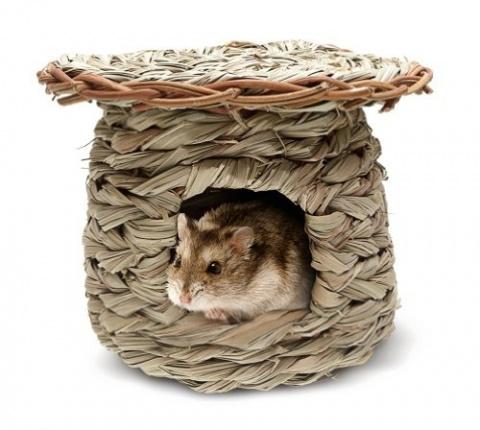 Домик для грызунов - Living World Green, Reed Hut /дом для хомяков title=