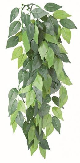 Dekors terārijam - TRIXIE Silk hanging plant, Ficus, 20*50 cm