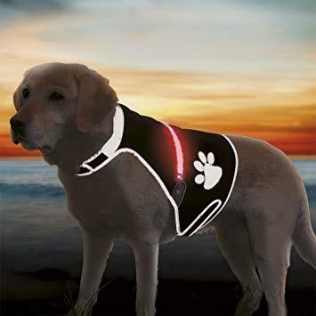Atstarojošā veste suņiem - Trixie Flash safety vest USB, L: 60–80 cm