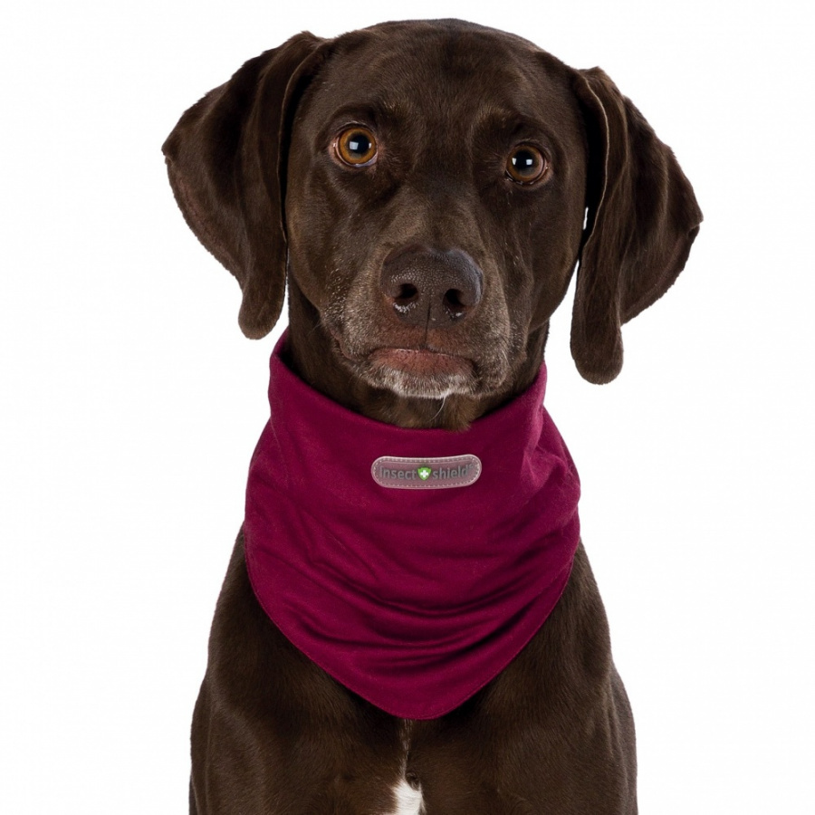 Suņu pret insektu apkakle - Trixie Insect Shield® Dog Loop, L, bordeaux