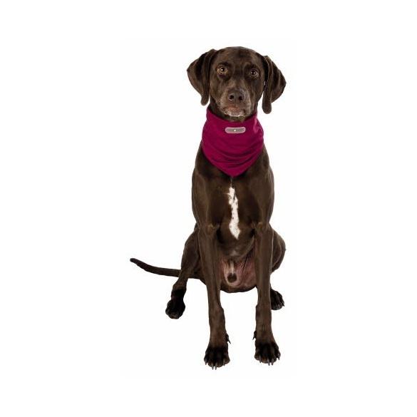 Suņu pretparazītu apkakle - Trixie Insect Shield® Dog Loop, L, bordeaux