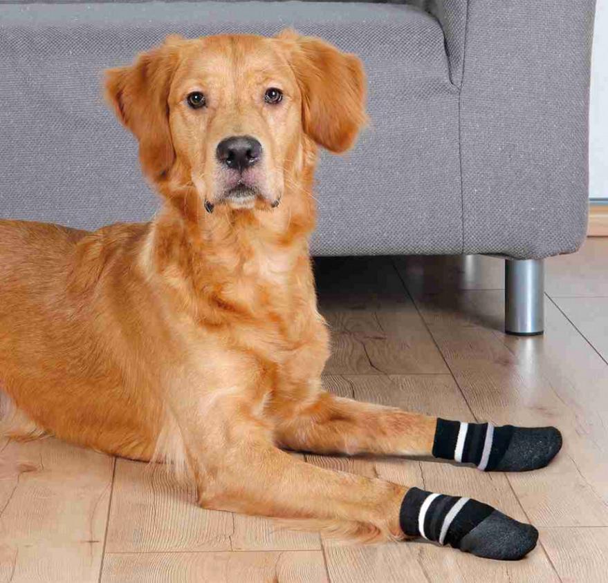 Suņu zeķes - Trixie Dog socks, neslīdošas, S–M, 2 gab.