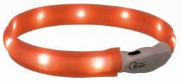 Gaismu izstarojoša kakla siksna - Flash ORANGE 50 cm