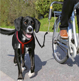 Pavada velosipēdam -  Biker Set Trixie