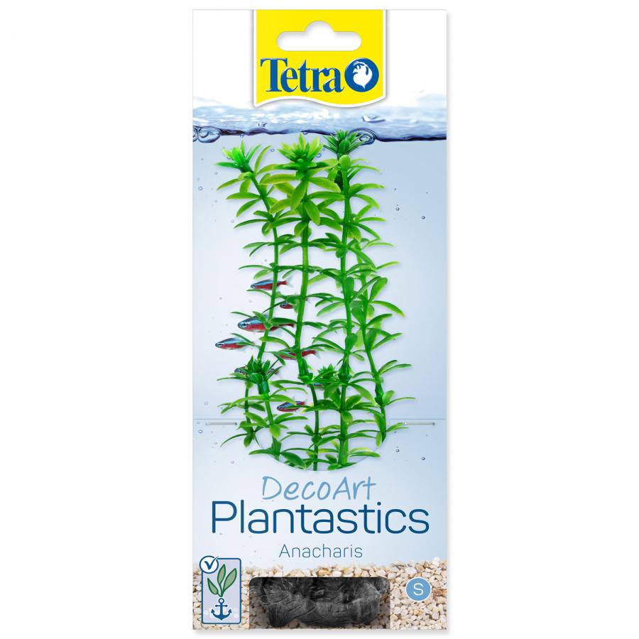Декоративное растение для аквариума – Anacharis S, 15 cм