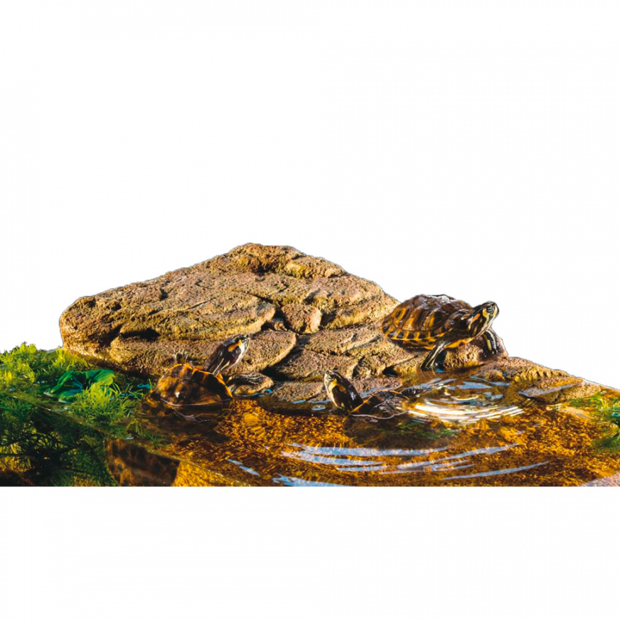 Dekors terārijam - ExoTerra Turtle Island, medium