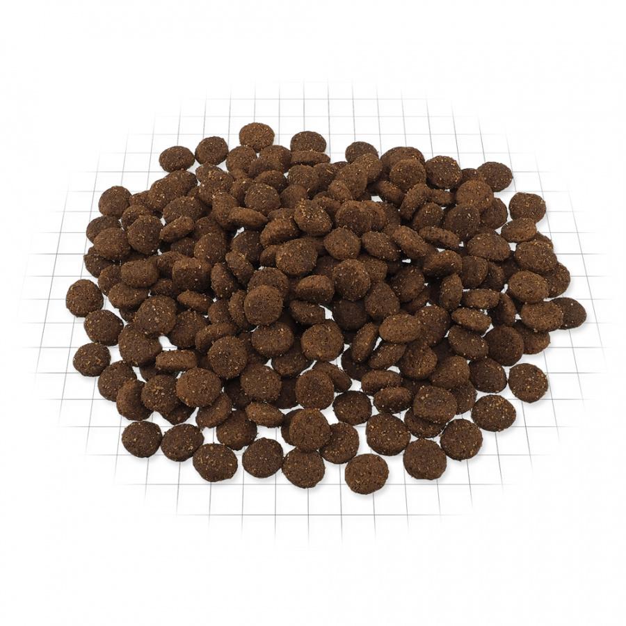 Barība suņiem - ONTARIO Adult Medium Chicken & Potatoes, 2,25 kg