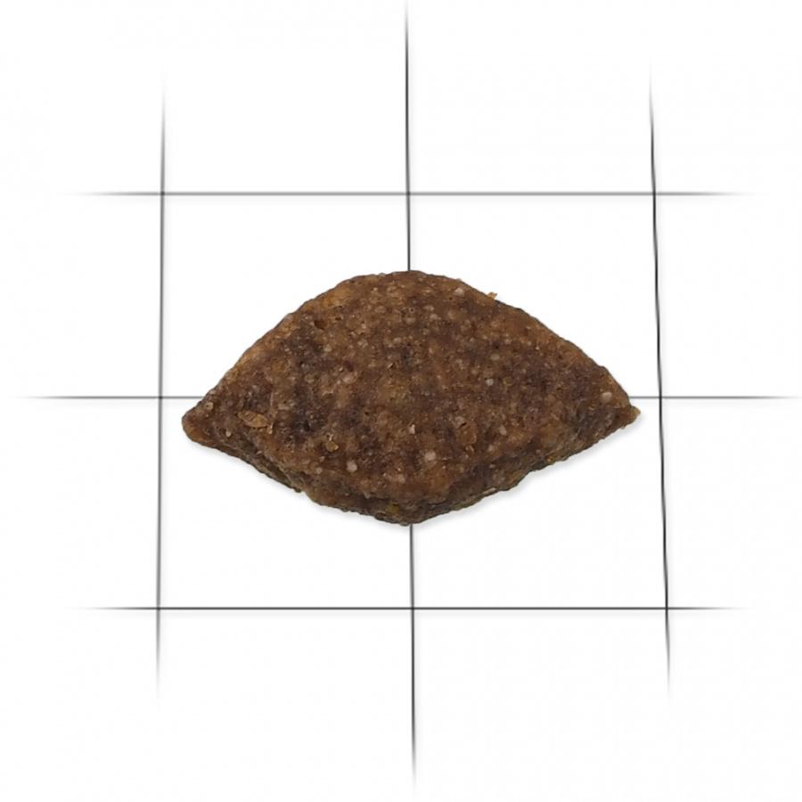 Barība suņiem - ONTARIO Adult Medium Fish & Rice, 0,75 kg