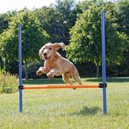 Аджилити препятствие для собак – TRIXIE Dog Activity Agility Hurdle, 123 x 115 см, Blue/Orange