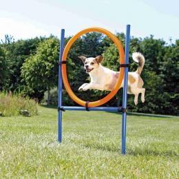 Аджилити обруч для собак – TRIXIE Dog Activity Agility Ring, 115 см, Blue/Orange