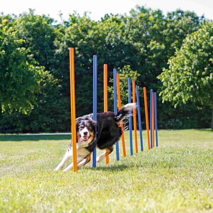 Аджилити препятствия для собак – TRIXIE Dog Activity Agility Slalom, 12 шт., Blue/Orange