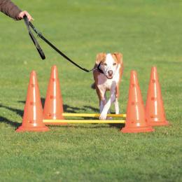 Adžiliti šķēršļi suņiem – TRIXIE Dog Activity Obstacles, 2 gab., Orange/Yellow