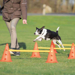 Аджилити препятствия для собак – TRIXIE Dog Activity Obstacles, 3 шт., Orange/Yellow