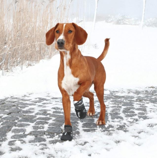 Apavi suņiem - Trixie, Walker Active Protective Boots, M, 2 gab.