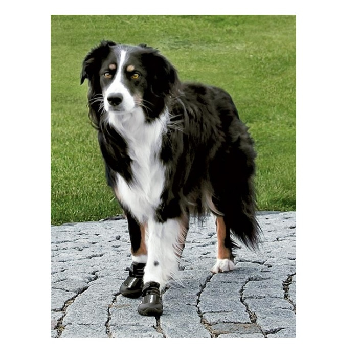 Apavi suņiem - Trixie, Walker Active Protective Boots, M-L, 2 gab.