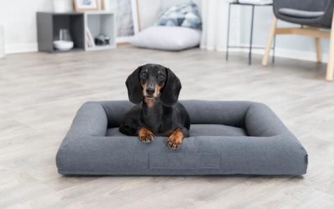 Guļvieta suņiem – TRIXIE Pulito Vital Bed, 80 x 60 cm, Grey title=