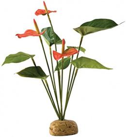 Декор для террариума – EXO TERRA Anthurium Bush
