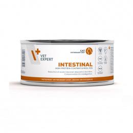 Ветеринарные консервы для кошек - VetExpert 4T VD INTESTINAL, 100 г