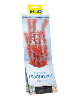 Декоративное растение для аквариума – Red Foxtall L