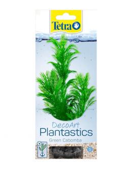Декоративное растение для аквариума – Green Cabomba S