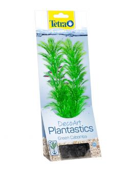Декоративное растение для аквариума – Green Cabomba M