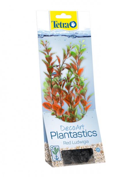 Декоративное растение для аквариума – Red Ludwigia M title=