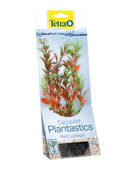 Декоративное растение для аквариума – Red Ludwigia M