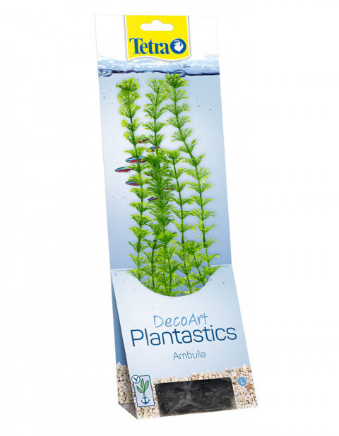 Dekoratīvs augs akvārijam – Tetra Ambulia L title=