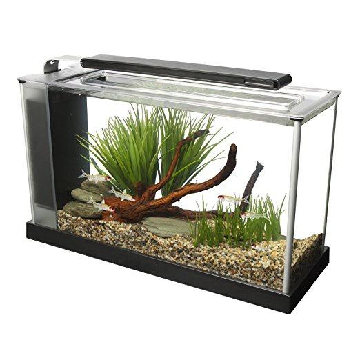 Akvārijs - Fluval SPEC V Glass Aquarium ( melns )