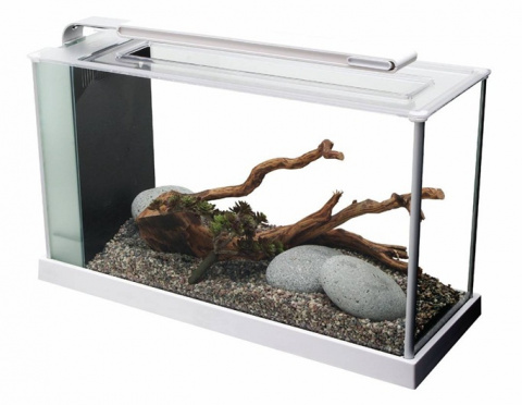 Akvārijs - Fluval SPEC V Glass Aquarium ( balts )