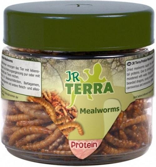 Papildbarība reptiļiem - JR FARM Terra Protein Mealworms 20 g