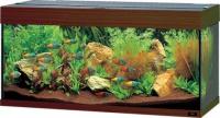 Akvarijní sety pro mořské ryby